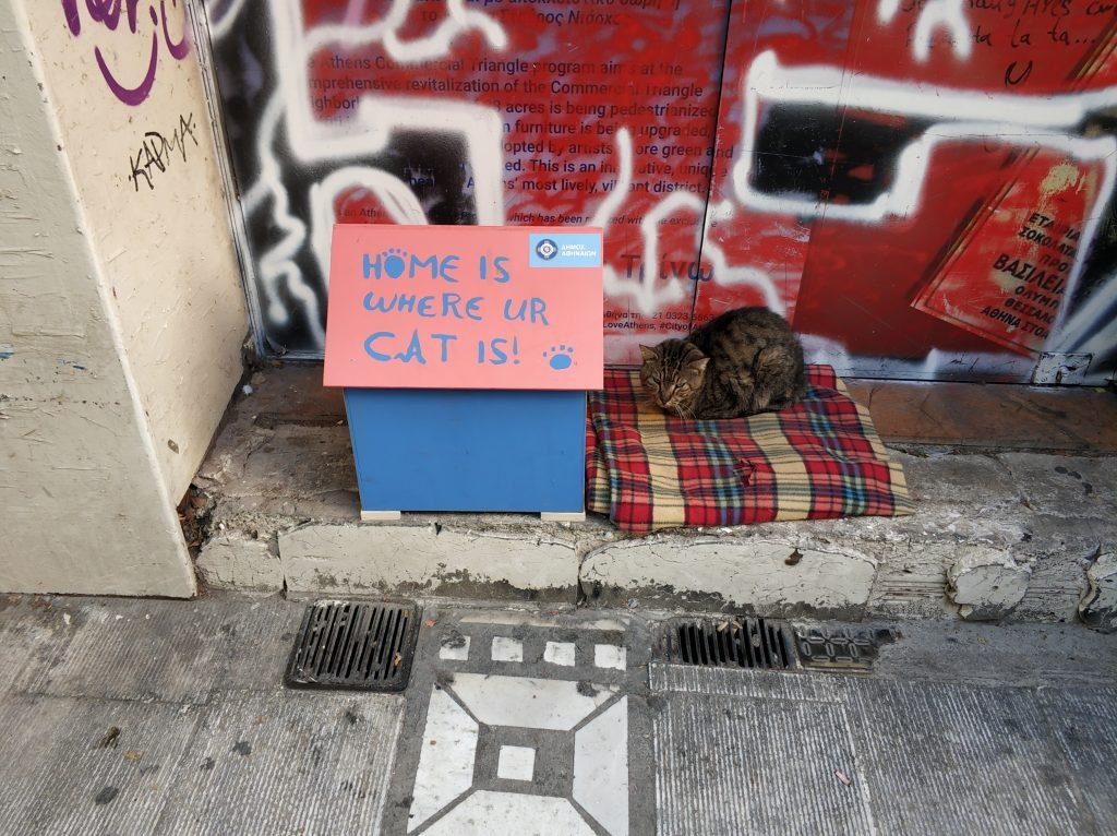 σπιτάκια γάτες selina athens